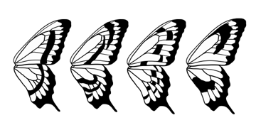 drawingbutterfly_8-5_design_stripes