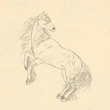 drawinghorse_9-4_hair_done