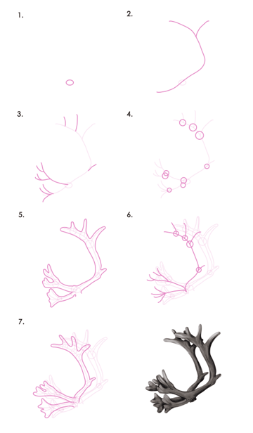drawingdeer-7-2-reindeer-antlers