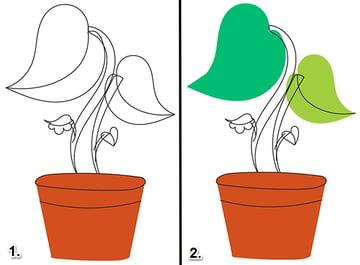 Plant-008