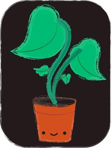 Plant-013