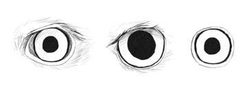 howtodrawbird-4-2-bird-eye-character