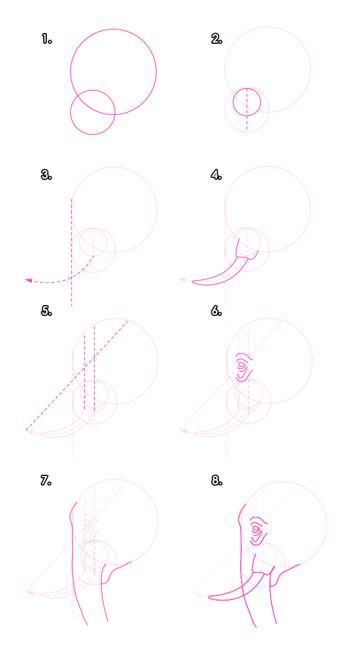 howtodrawelephants-2-1-elephant-head-proportions