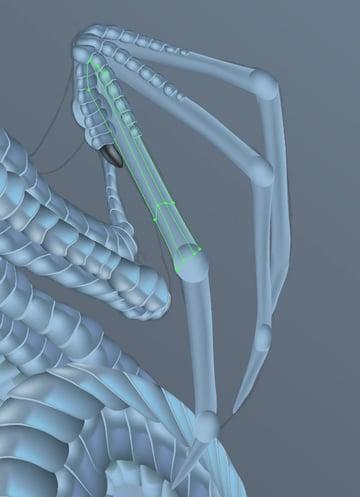 snowglobedragon-5-7-vector-dragon-wings