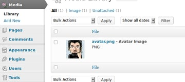 The Avatar Manager plugin media states under the Media Library Screen