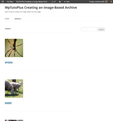The archive page as displayed using your new template file