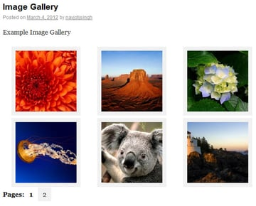 Gallery Pagination using Cleaner Gallery