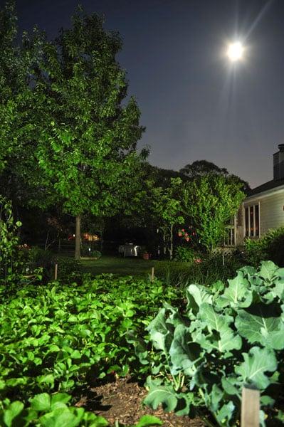landscape lighting photography