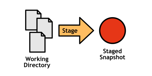 Figure 3: The working directory and the staging area