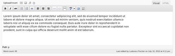 Editor has usable width