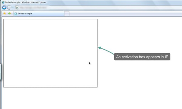 Flash Website Browser Inconsistency