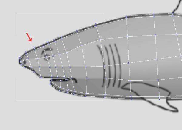 3dsMax_Shark_Modeling_28a