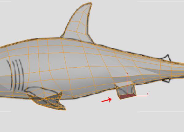 3dsMax_Shark_Modeling_49