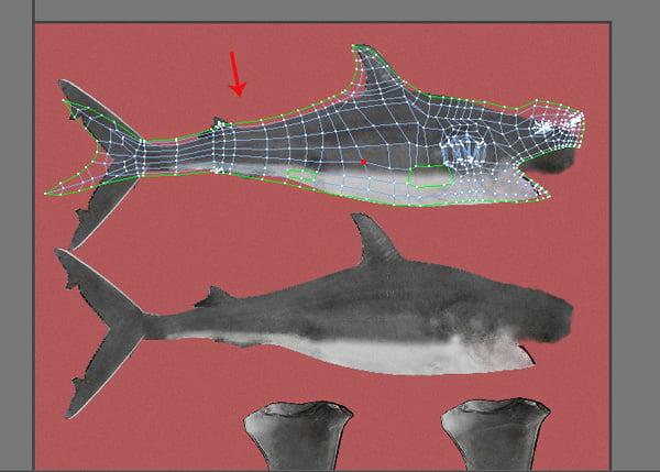 Shark_PT2_43