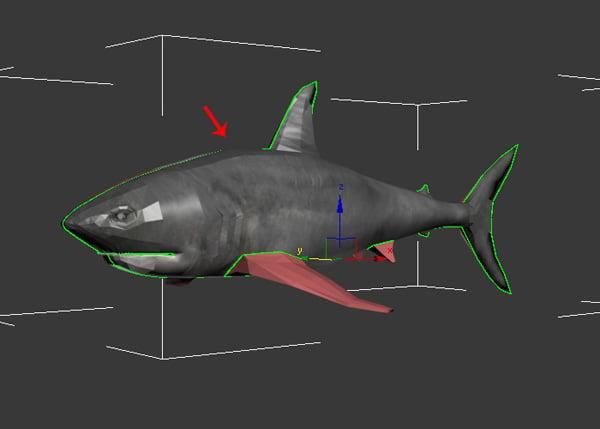 Shark_PT2_45