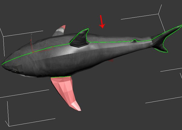 Shark_PT2_50