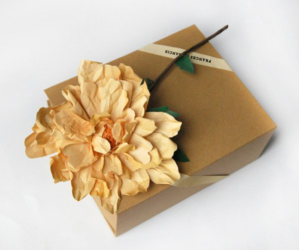 Paper flowers by Frances & Francis
