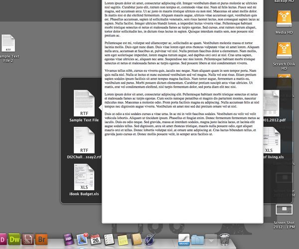 Hovering Over A File And Pressing Space Bar In A Docked Folder Will Quicklook The File