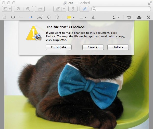 Preview wont allow you to edit a locked file without first unlocking it