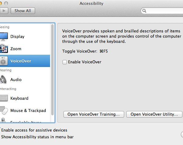 VoiceOver appears to have only a few options but in actual fact there's a whole other app to use