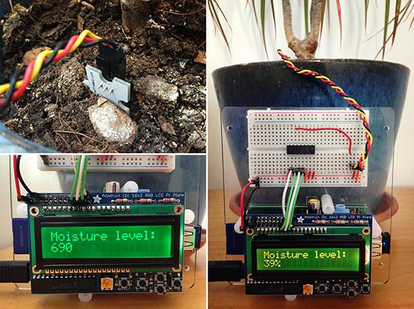 Raspberry Pi Moisture Sensor