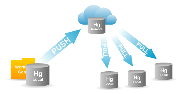 Pushing and Pulling from a Remote Repository
