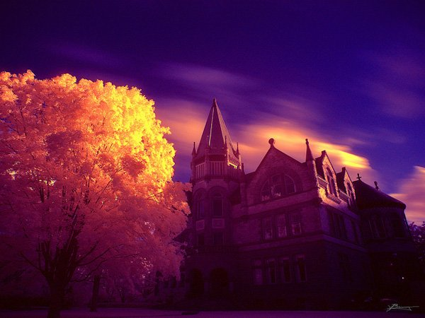 Image Credit: Fairy Tale by Dexxus