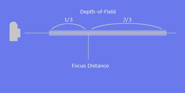 shallow depth of field photography