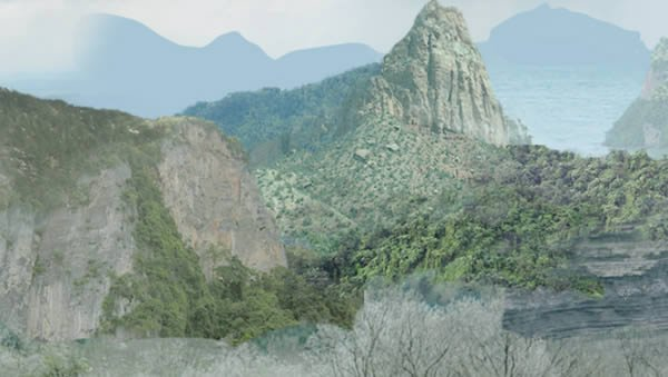 jungle-05 reduplicated render