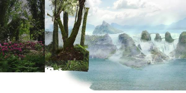 jungle-03 placement