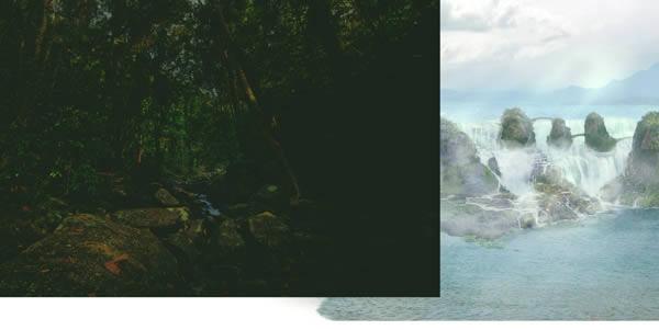 jungle-01 reduplicate placement