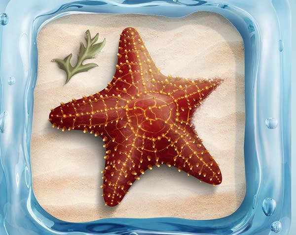 Bury Starfish