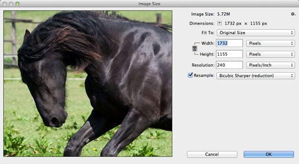 10 Ways to Make Photoshop Run Faster on Your Machine