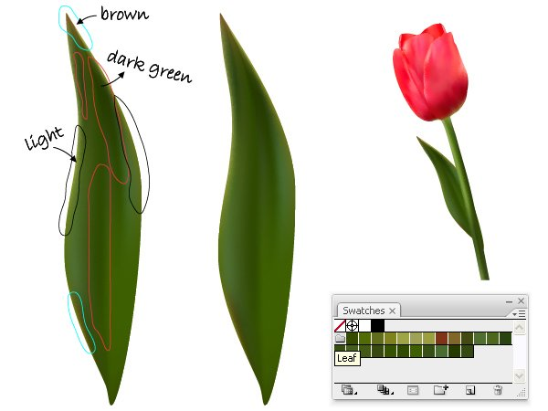 diana-tut-tulips mesh-33