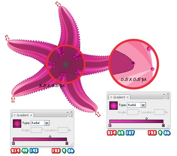 diana-QT-Starfish-19