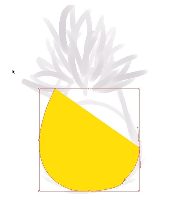 pineapple_003