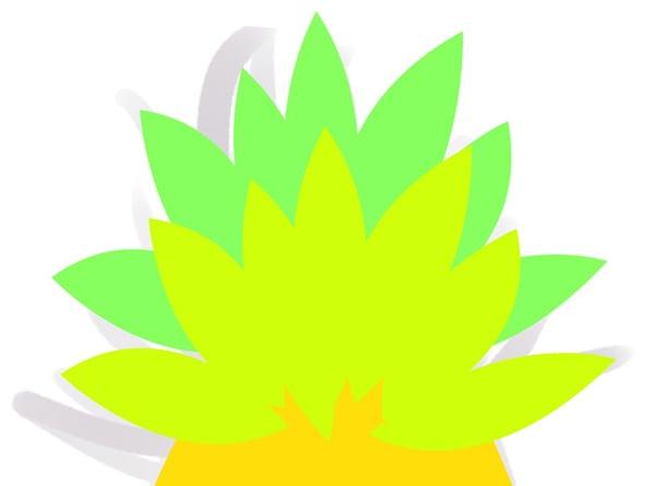 pineapple_008