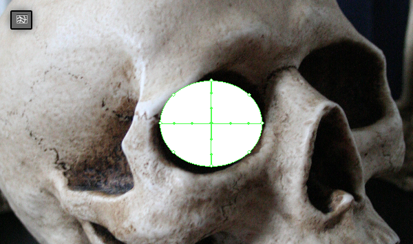 skull_3-2_eyes