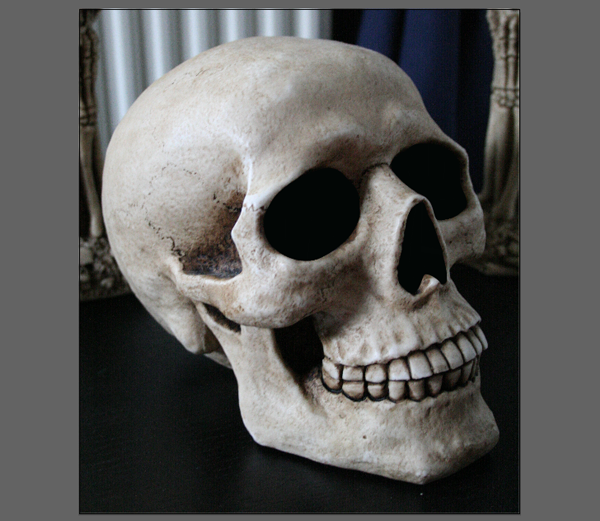 skull_3-7_eyes_and_nose_done