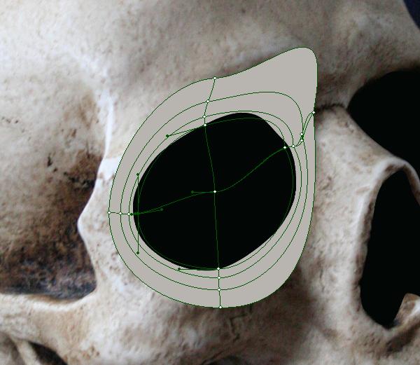 skull_4-4_more_mesh_points