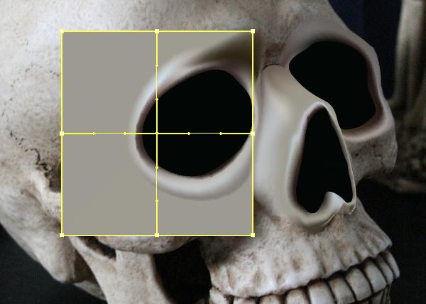 skull_6-1_cheek