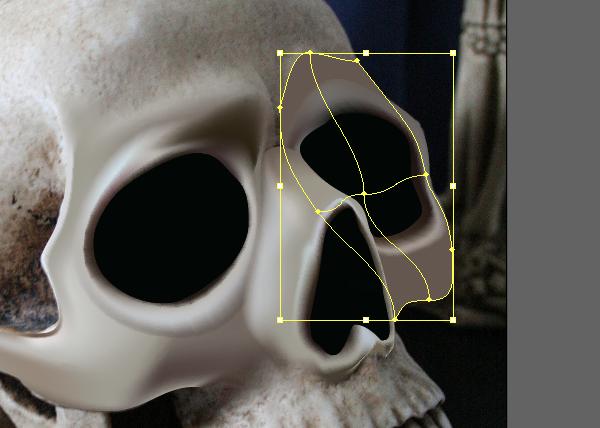 skull_6-5_cheek