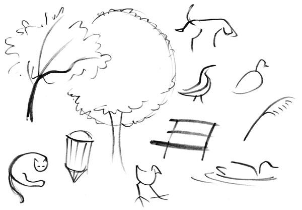 Non-human sketches