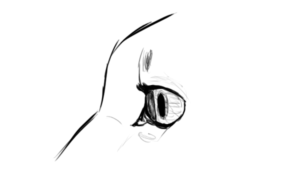 catdrawing_5-7_eyes_side_view