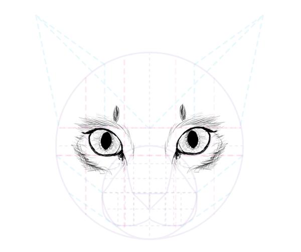 catdrawing_5-8_eyes_complete