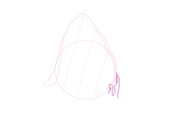 catdrawing_7-4_ear_sketch