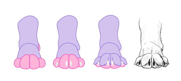 drawingdogs_3-7_paw_drawing_front