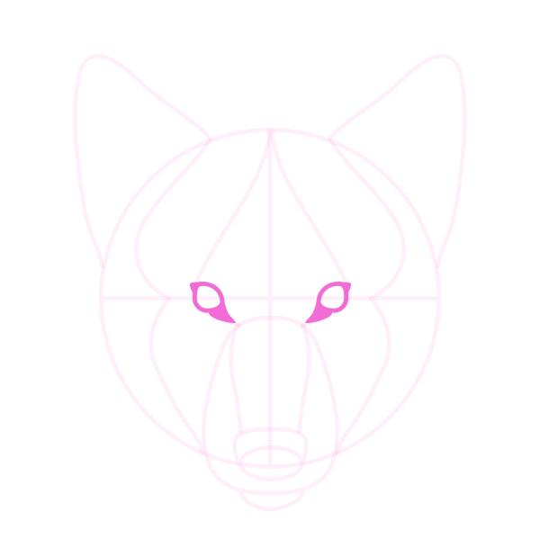 drawingdogs_4-7_head