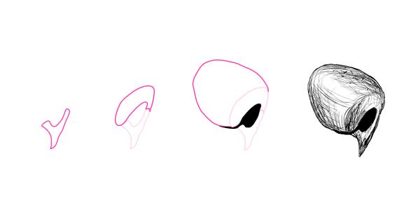 drawingdogs_6-2_nose