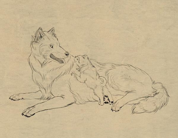 drawingdogs_9-1_fur2